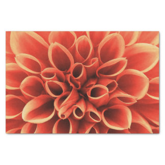 Beautiful Orange Dahlia Flower Tissue Paper