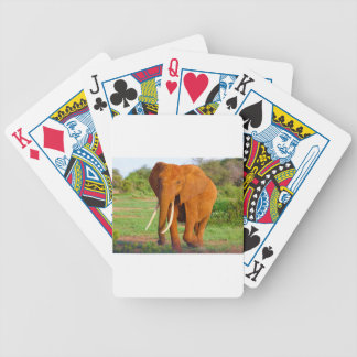 Beautiful Orange Elephant Bicycle Playing Cards