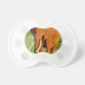 Beautiful Orange Elephant Pacifier