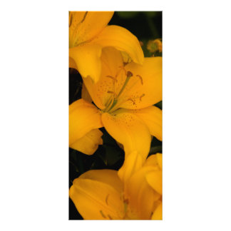 Beautiful orange lily flowers bookmark, gift idea personalized rack card