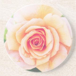 Beautiful orange rose blossom drink coaster