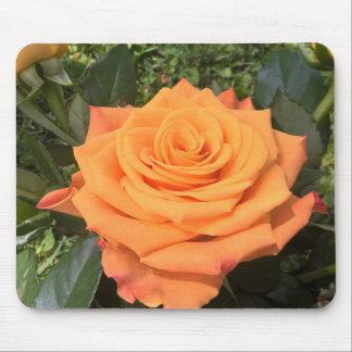 Beautiful orange rose photo mousepad