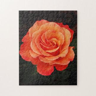 Beautiful orange rose print puzzle