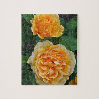 Beautiful orange roses puzzles