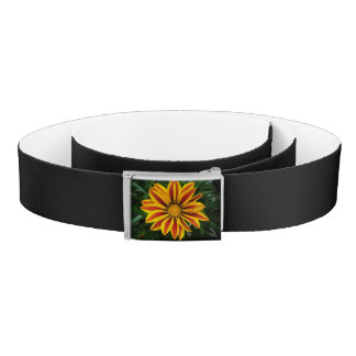 Beautiful Orange Sun Flower Photo Belt