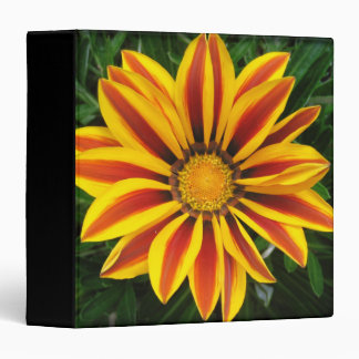 Beautiful Orange Sun Flower Photo Binder