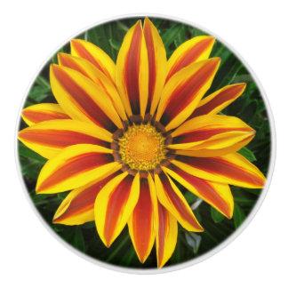 Beautiful Orange Sun Flower Photo Ceramic Knob