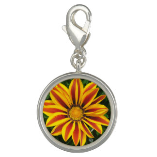 Beautiful Orange Sun Flower Photo Charm
