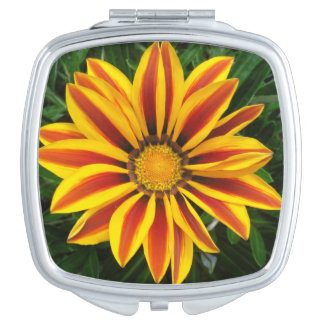 Beautiful Orange Sun Flower Photo Compact Mirror