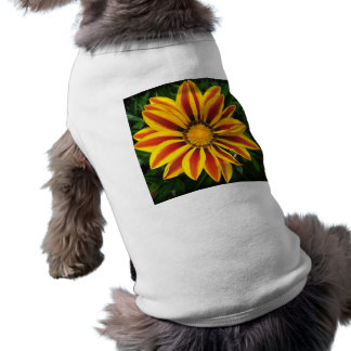 Beautiful Orange Sun Flower Photo Doggie Tshirt