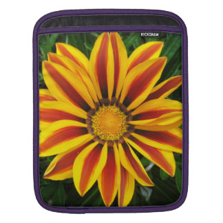 Beautiful Orange Sun Flower Photo iPad Sleeve