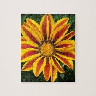 Beautiful Orange Sun Flower Photo Jigsaw Puzzle
