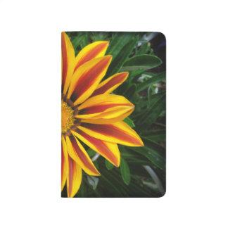 Beautiful Orange Sun Flower Photo Journal