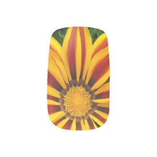 Beautiful Orange Sun Flower Photo Minx Nail Art