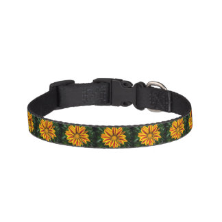 Beautiful Orange Sun Flower Photo Pet Collar