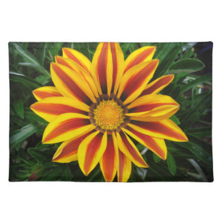 Beautiful Orange Sun Flower Photo Placemat