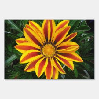 Beautiful Orange Sun Flower Photo Sign