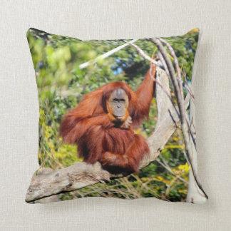 Beautiful Orangutan photo Throw Pillow