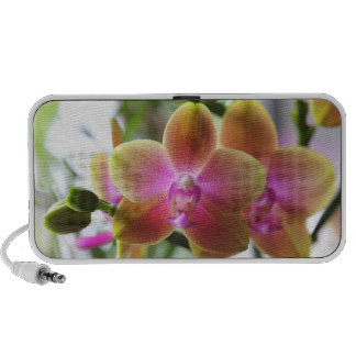 Beautiful Orchids Travel Speaker