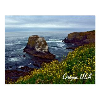 Beautiful Oregon coastline Postcard