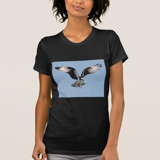 Beautiful Osprey bird Searching for prey T-Shirt