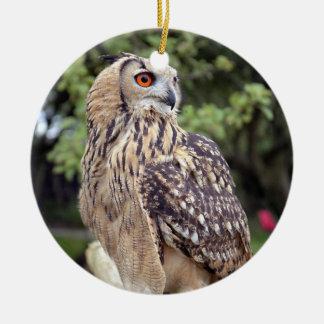 Beautiful Owl Wildlife Photo Gifts Ceramic Ornament