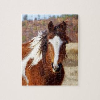 Beautiful Paint Horse Puzzle
