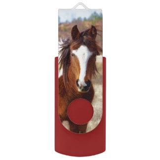 Beautiful Paint Horse Swivel USB 2.0 Flash Drive
