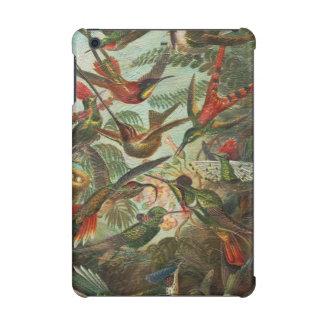 Beautiful Painted Vintage Birds iPad Mini Case