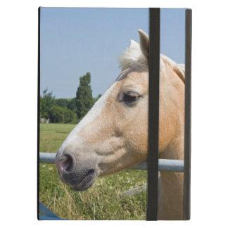 Beautiful Palomino Horse iPad Air Case