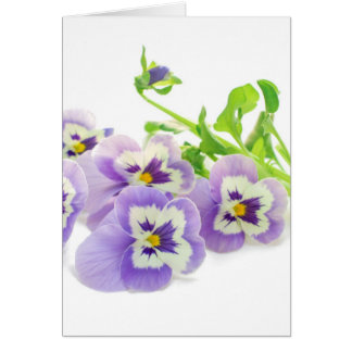 Beautiful pansy bouquet postcards and stationery
