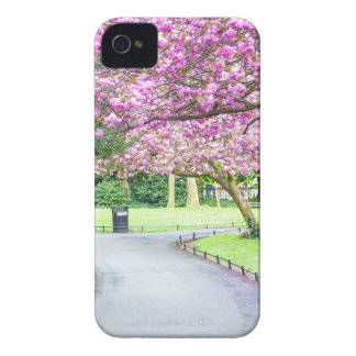 Beautiful park during the spring Case-Mate iPhone 4 case