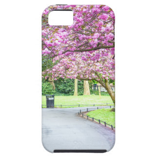 Beautiful park during the spring iPhone 5 covers
