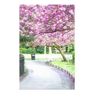 Beautiful park during the spring stationery