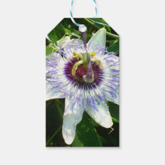 Beautiful Passion Flower With Garden Background Gift Tags