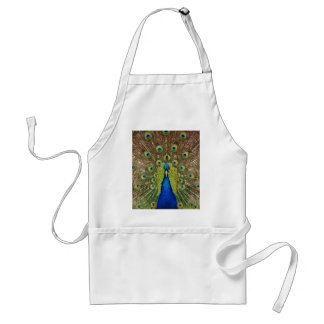 Beautiful peacock and tail feathers print standard apron