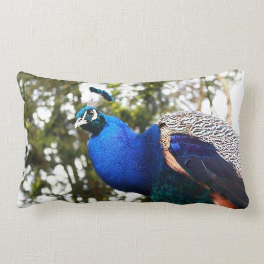 Beautiful peacock customizable pillow