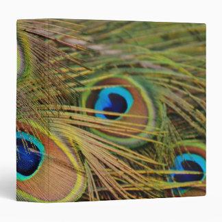 Beautiful Peacock Feathers 3 Ring Binder