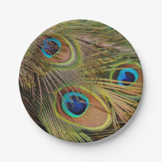 Beautiful Peacock Feathers 7 Inch Paper Plate