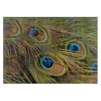 Beautiful Peacock Feathers Boards