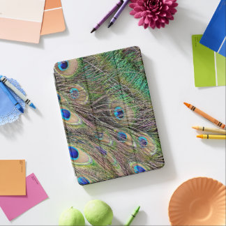 Beautiful Peacock Feathers iPad Air Cover