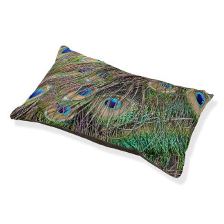 Beautiful Peacock Feathers Small Dog Bed