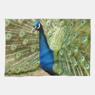 Beautiful Peacock Kitchen Towel