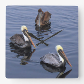 Beautiful Pelicans nature at it's best Square Wall Clock