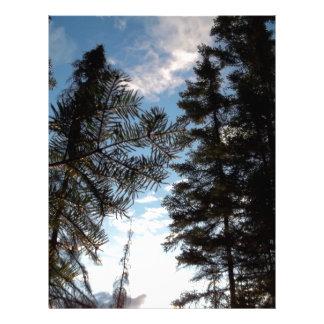 Beautiful Pine Trees. Letterhead Design