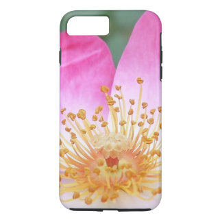 Beautiful Pink Flower Blossom iPhone 7 Plus Case