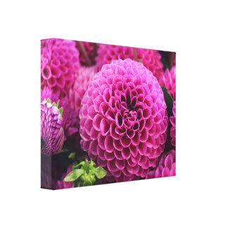 beautiful pink flower canvas print