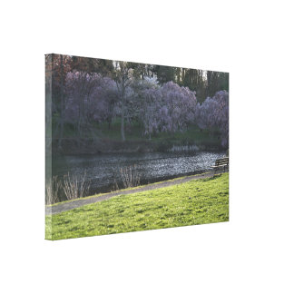 "Beautiful Pink Flowered Trees by Pond, NJ 36""x24"" Canvas Print"