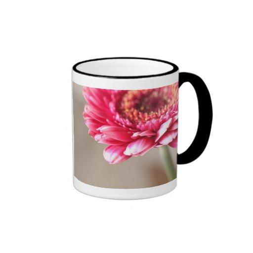 Beautiful pink gerbera on beige mug