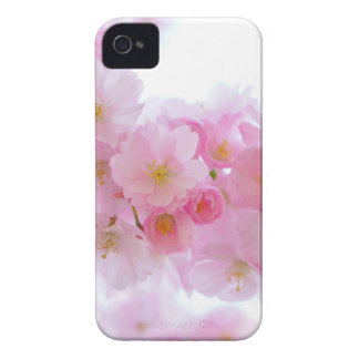 Beautiful Pink Japanese Cherry Blossom Case-Mate iPhone 4 Case
